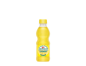 Uludağ Limonata 250 ml PET Bottle