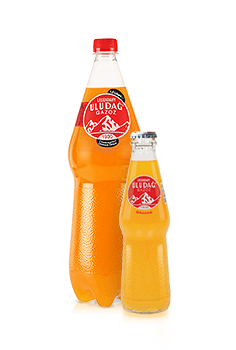 Legendary Uludağ Gazoz Orange